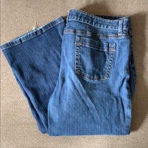 Anne Taylor Blue Jeans